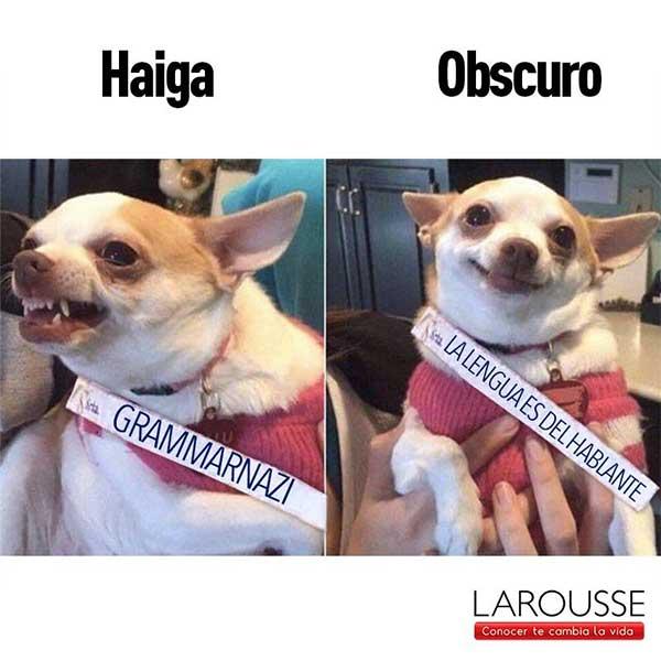 Makken - Larousse - Social Media